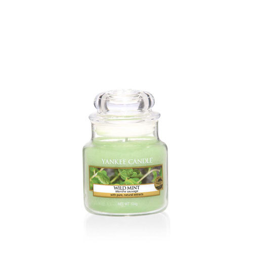 Wild Mint Small Jar Candle