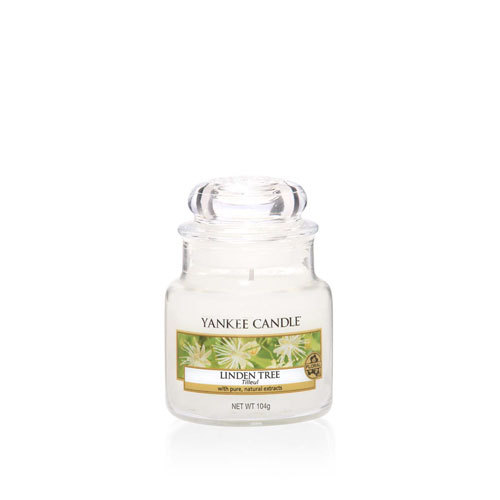 Linden Tree Small Jar Candle