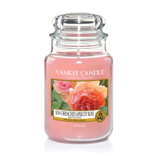 Sun Drenched Apricot Rose Large Jar Candle