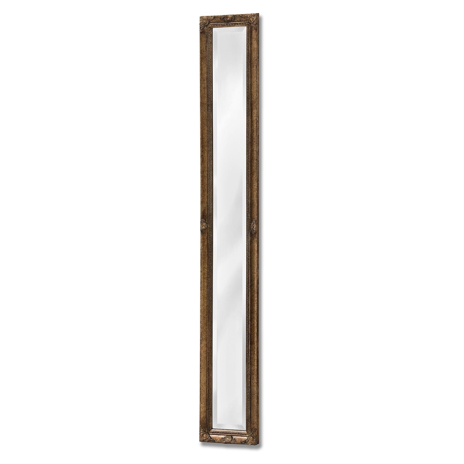 Antique Gold Narrow Wall Mirror