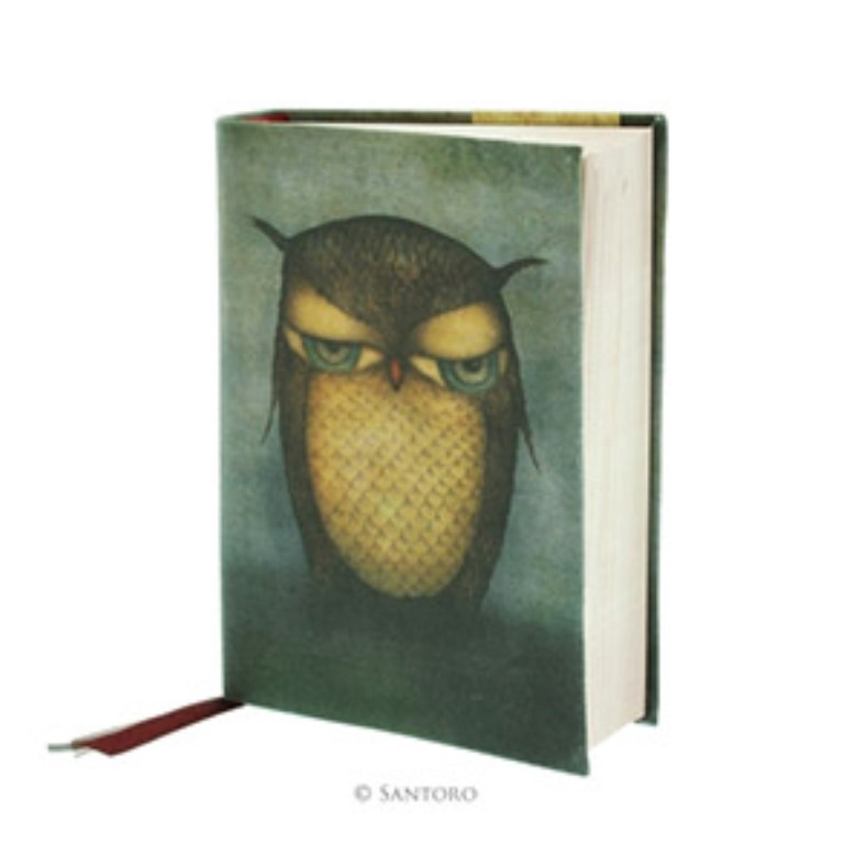 Eclectic Grumpy Owl Cloth Notebook